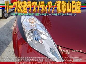 リーフ改造ラプソディア(2)/和歌山日産05