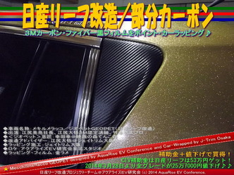 日産リーフ改造/部分カーボン@アクアライズEV研究会08