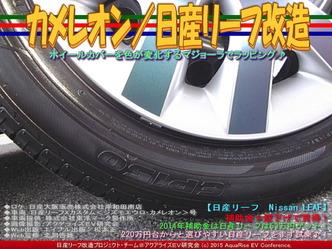 カメレオン(2)/日産リーフ改造05