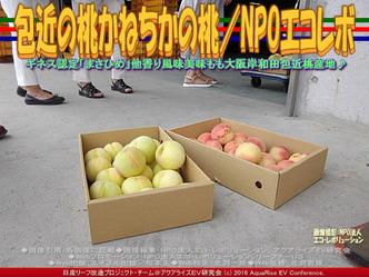 包近の桃/NPO法人エコ・レボリューション02