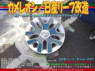 カメレオン(2)/日産リーフ改造01