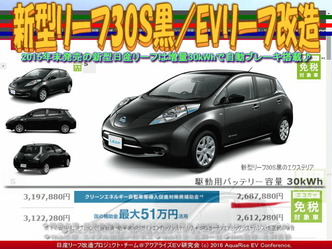 新型リーフ30S黒/EVリーフ改造01