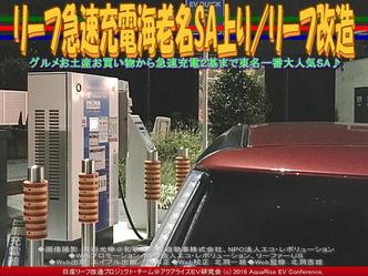リーフ急速充電海老名SA上り/リーフ改造03