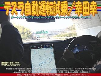テスラ自動運転試乗(4)/幸田幸03