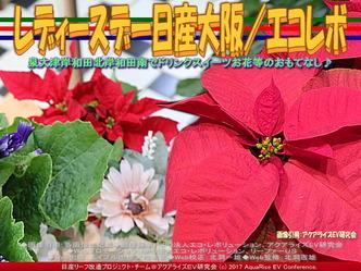 レディースデー日産岸和田南/エコレボ画像02