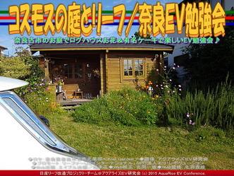 コスモスの庭とリーフ/奈良EV勉強会05