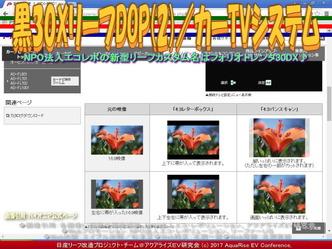 黒30XリーフDOP(2)/カーTVシステム画像01