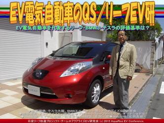 EV電気自動車のQS/リーフEV研05