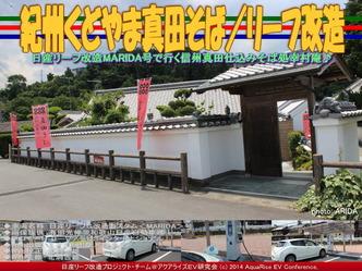 紀州くどやま真田そば/リーフ改造05
