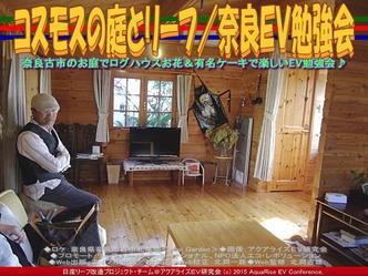 コスモスの庭とリーフ(3)/奈良EV勉強会04