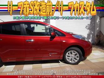リーフ赤S改造前(2)/リーフカスタム03