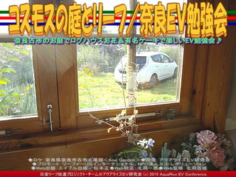 コスモスの庭とリーフ(3)/奈良EV勉強会03