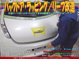 バックドア・ラッピング/リーフ改造02