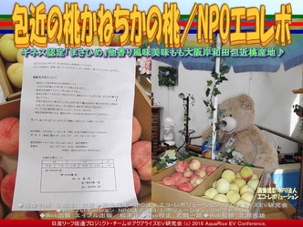 包近の桃/NPO法人エコ・レボリューション04