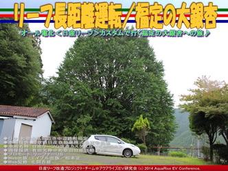 リーフ長距離運転/福定の大銀杏@日産リーフ改造05
