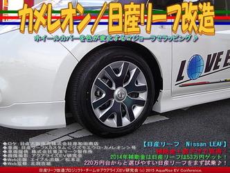 カメレオン/日産リーフ改造02