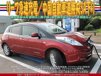 リーフ急速充電/中国自動車道勝央SA下り02
