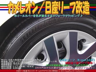 カメレオン(2)/日産リーフ改造03
