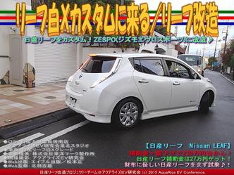 リーフ白Xカスタムに来る(6)/リーフ改造02