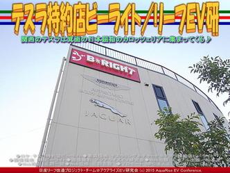 テスラ特約店ビーライト(2)/リーフEV研02