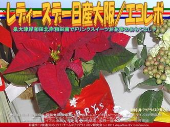 レディースデー日産岸和田南/エコレボ画像01