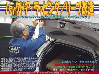 バックドア・ラッピング(4)/リーフ改造03