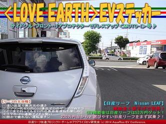 <LOVE EARTH>EVステッカー/リーフカスタム03