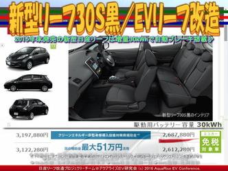 新型リーフ30S黒/EVリーフ改造04