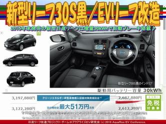 新型リーフ30S黒/EVリーフ改造03