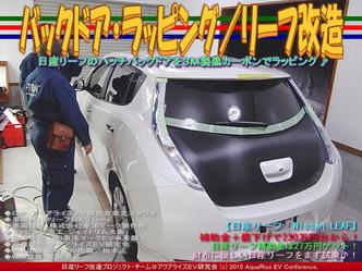 バックドア・ラッピング(4)/リーフ改造05