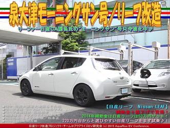 泉大津モーニングサン号(2)/リーフ改造05