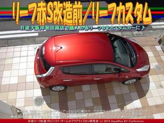リーフ赤S改造前(2)/リーフカスタム04