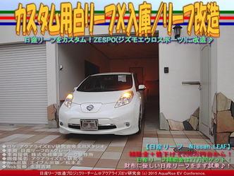カスタム用白リーフX入庫/リーフ改造01