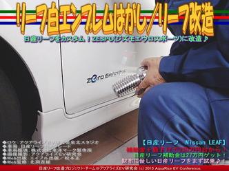 リーフ白エンブレムはがし(2)/リーフ改造02