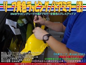 リーフ黄色ラッピング/ドアミラー(2)04