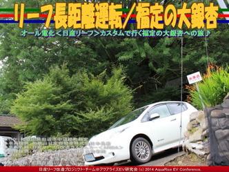 リーフ長距離運転/福定の大銀杏@日産リーフ改造03