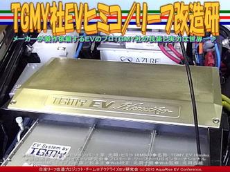 TGMY社EVヒミコ/リーフ改造研04