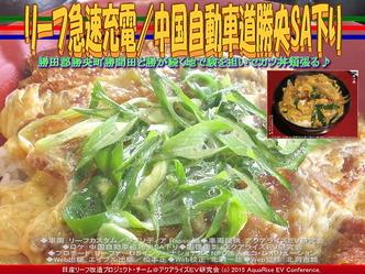 リーフ急速充電/中国自動車道勝央SA下り04