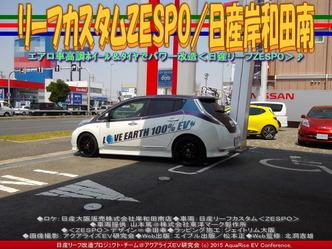 リーフカスタムZESPO/日産岸和田南05