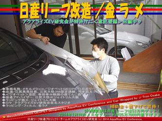 日産リーフ改造/金ラメ@アクアライズEV研究会04