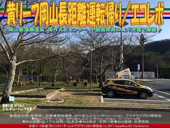 黄リーフ岡山長距離運転帰り(2)/エコレボ画像03