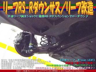 リーフRS-Rダウンサス(2)/リーフ改造01
