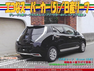 エコなスーパーカー(5)/日産リーフ03