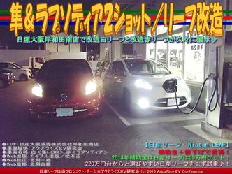 隼&ラプソディア2ショット/リーフ改造02