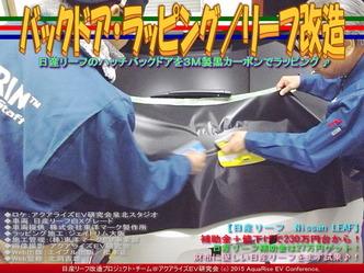 バックドア・ラッピング(2)/リーフ改造05