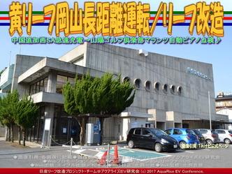 黄リーフ岡山長距離運転(2)/リーフ改造画像02