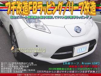 プチ改造FBラッピング/リーフ改造04