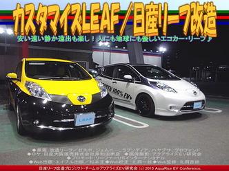 カスタマイズLEAF/日産リーフ改造03