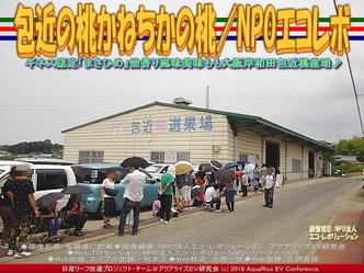 かねちか桃/NPOエコレボリーフ改造01