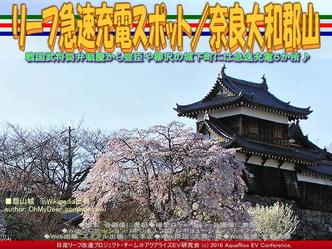 リーフ急速充電スポット/奈良大和郡山02